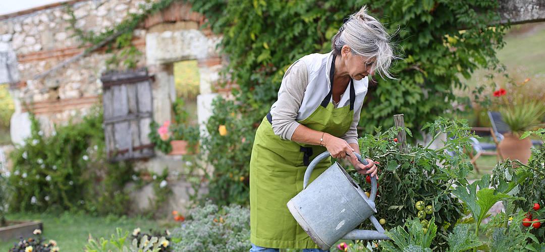 Thema Garten Mit Unseren Informationen Vermeiden Sie Konflikte Jensen Doering Immobilienmakler Und Bausachverstandige