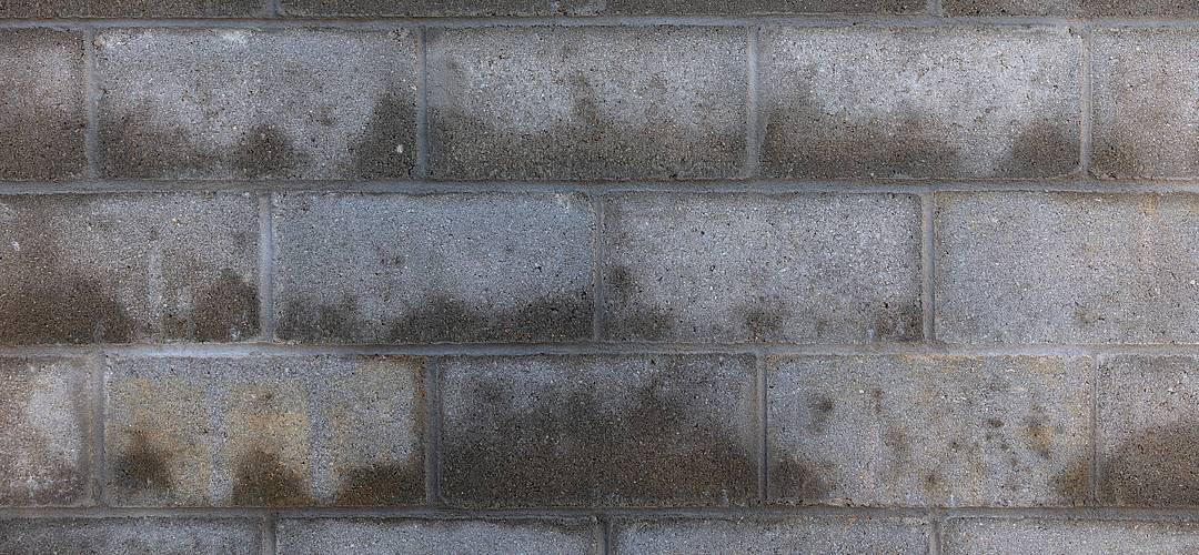 Feuchte Wände – Bauliches und gesundheitliches Risiko beseitigen