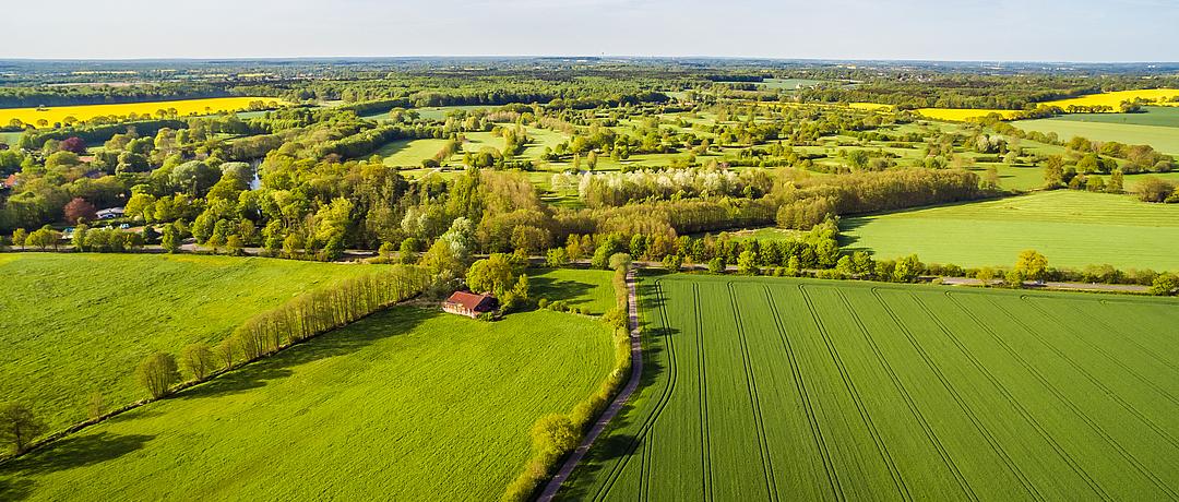 Ihr Immobilienmakler für Angeln und das Umland
