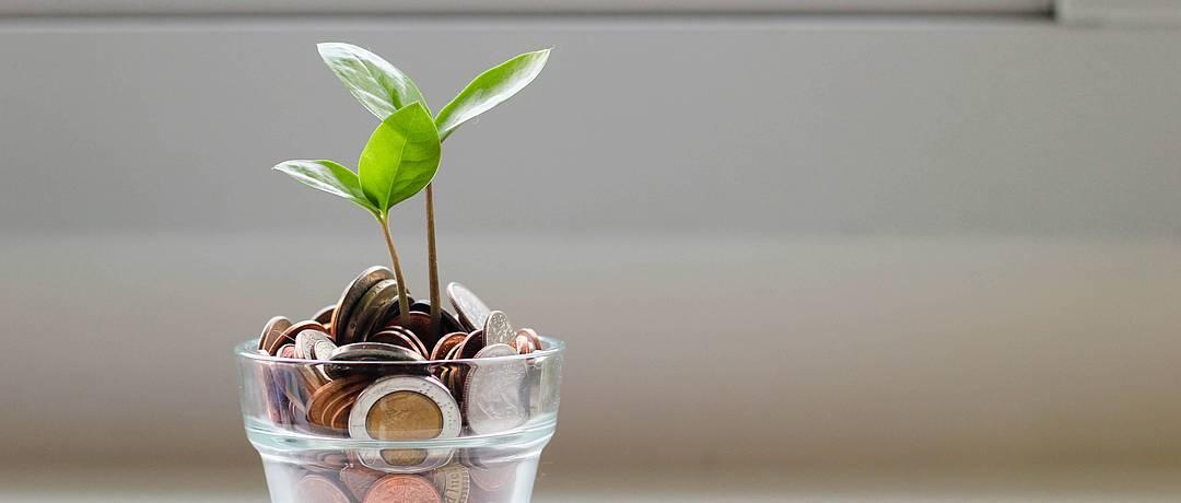 Energetische Sanierung – Energiebilanz der Immobilie steigern & Kosten sparen